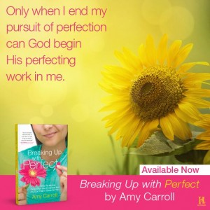 Only when I end my pursuit of perfection can God begin His perfecting work in me.