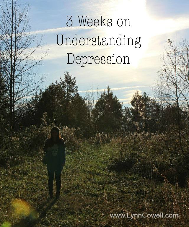 3 Weeks on Understanding Depression