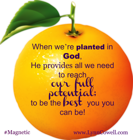 Focusing on drawing from God and His word, we can reach the fullest potential He planted us for. We can grow into a person who is bearing fruit as today verse mentions – fruit that will last.