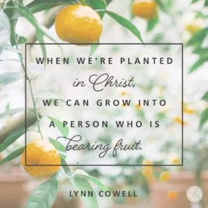 When we are planted in God, He provides all we need to reach our fullest potential.