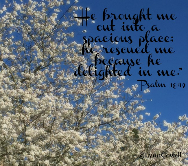 He led me to a place of safety; he rescued me because he delights in me.