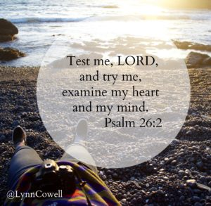 Test me, Lord, and try me, examine my heart and my mind. Psalm 26:2